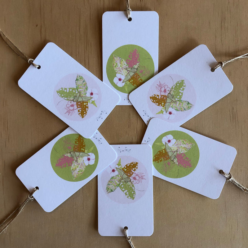 Tropical Grasshopper 6 Gift Tags