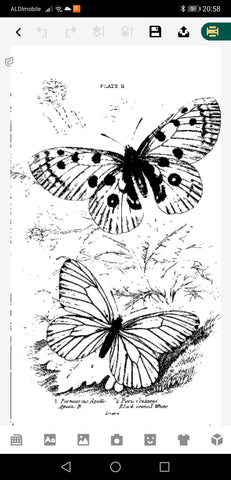 Printing the vintage butterflies with the PeriPage printer