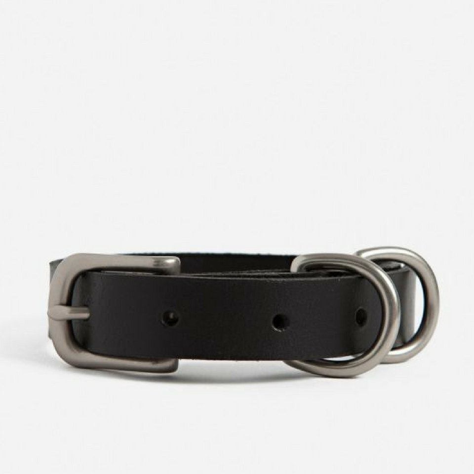 Small Dog Collar - Black