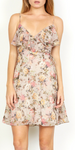Object Of Desire Dress - Blush