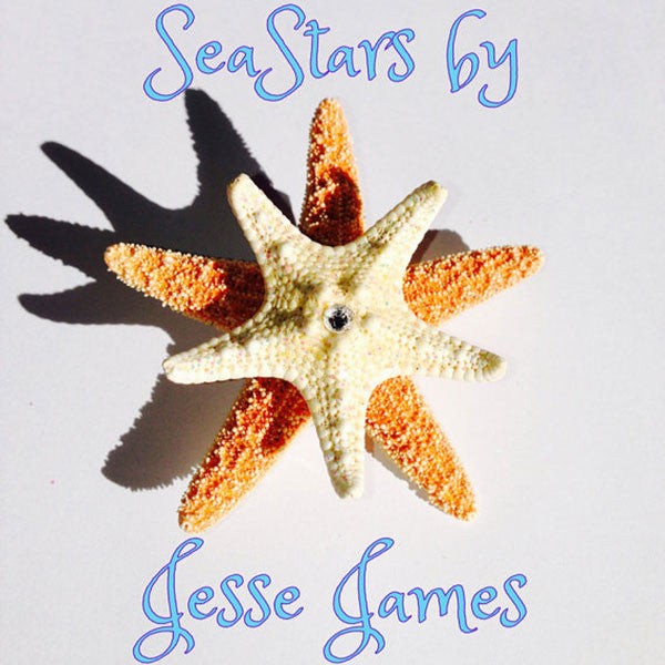Mermaid Starfish Hair-clips (Double Knobby White & Sugar with Rhinestone)