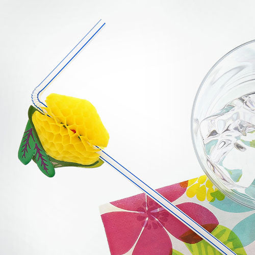Assorted Paper Fruit Straws
