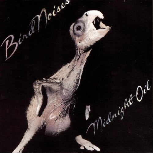 MIDNIGHT OIL 'Bird Noises' LP