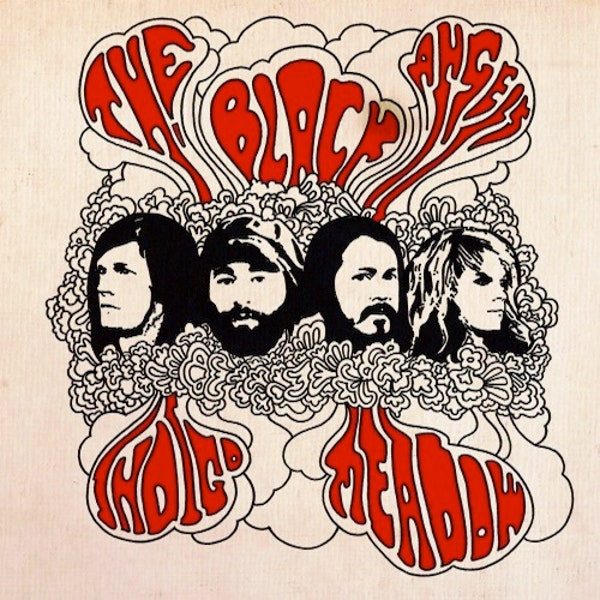 THE BLACK ANGELS 'Indigo Meadow' LP