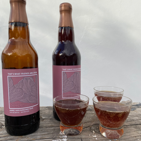 Beer bottles with label featuring a mushroom and glasses of beer