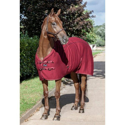 LeMieux Thermo-Cool Rug - Le Mieux - Equitain
