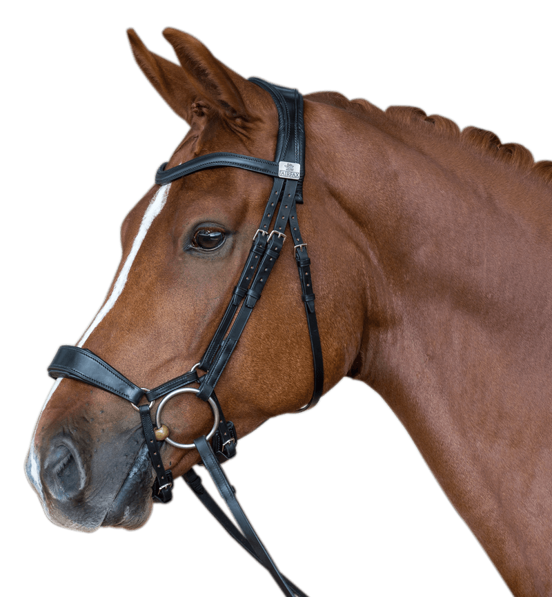 Fairfax - Drop Noseband
