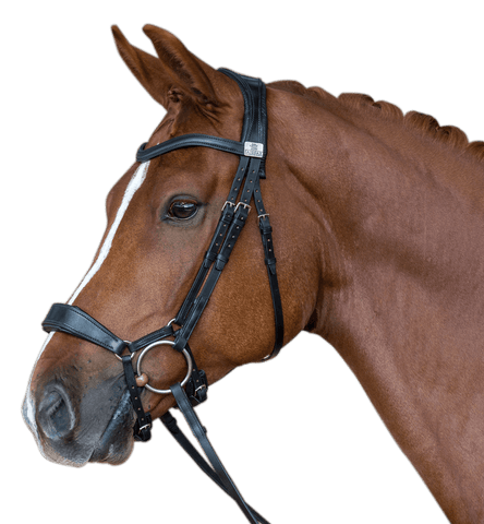 Fairfax - Drop Noseband - Fairfax - Equitain