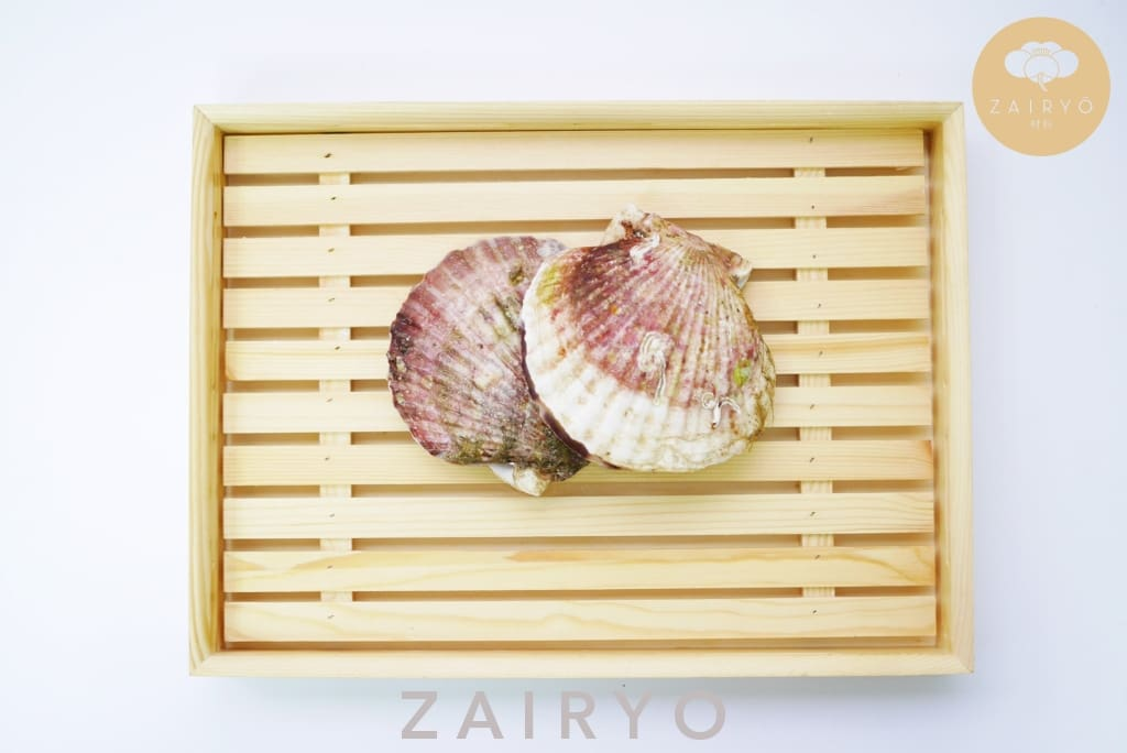 [Seasonal] Live Karatsuki Hotate / Live Scallop With Shell - Seafood