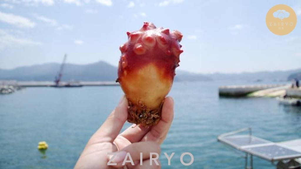 [Seasonal] Sea Squirt / Hoya - Seafood