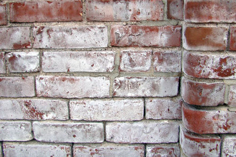 brick covered in the white, flaky powder or mineral salt known as efflorescence