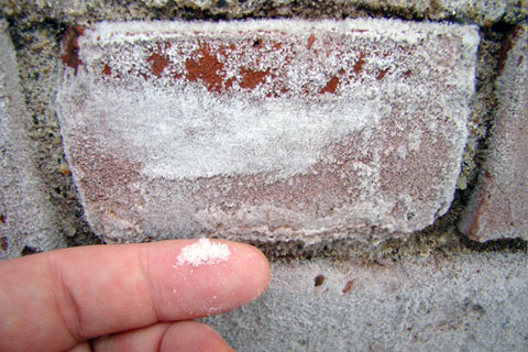 brick efflorescence showing as a white mineral salt powder on brick surfaces.