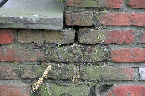 water damage and erosion to brick and mortar