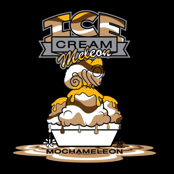 Ice Cream Meleon logo with chameleon sitting on top of scoops of ice cream while blending into the mocha, vanilla, caramel and swirls in the ice cream.
