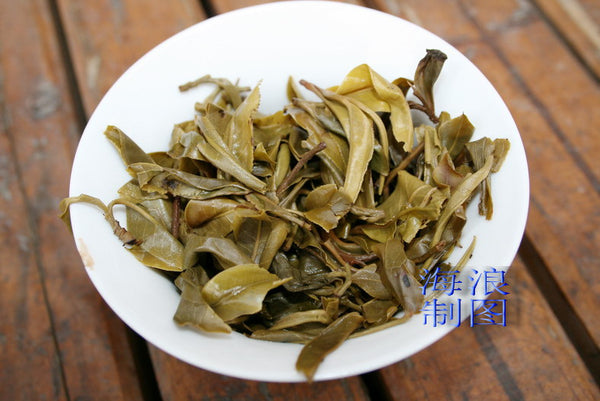 "2007 Hai Lang Hao ""Bu Lang Mountain"" Wild Arbor Raw Pu-erh - Yunnan Sourcing Tea Shop"