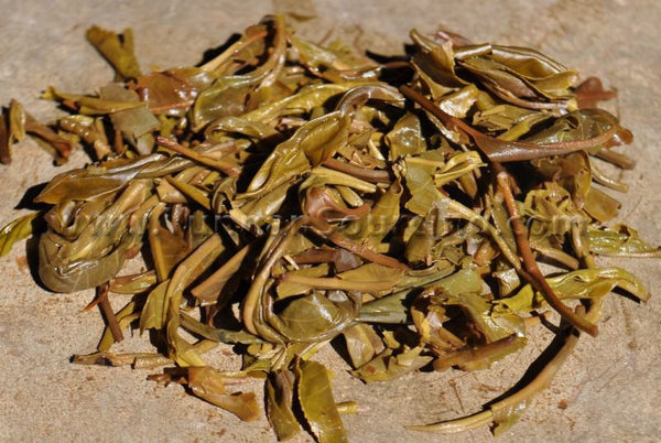 "2010 Yunnan Sourcing ""Autumn Jie Liang"" Raw Pu-erh Tea Cake - Yunnan Sourcing Tea Shop"