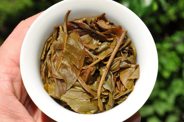 "2012 Yunnan Sourcing ""Chen Xiang"" Aged Raw Pu-erh of Wu Liang Mountain"