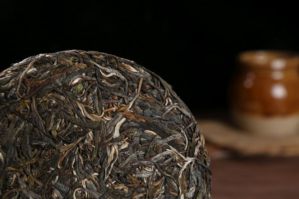 "2019 Yunnan Sourcing ""Autumn Wa Long Village"" Old Arbor Raw Pu-erh Tea Cake"