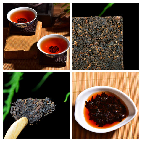 Aged Ripe Pu-erh Tea Storage Comparison Sampler