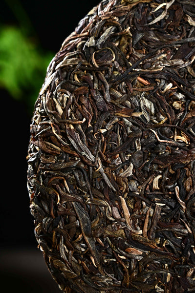 "2020 Yunnan Sourcing ""Aged Bu Lang Mountain"" Raw Pu-erh Tea Cake"
