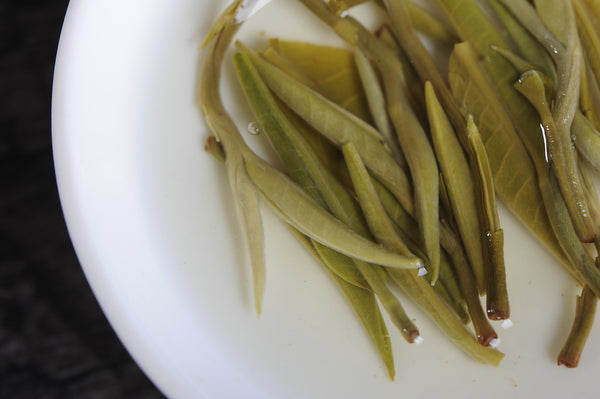 "Yunnan ""Jade Snail"" Green Tea from Mojiang"