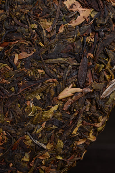 "2019 Yunnan Sourcing ""Purple Pig"" Wild Tree Purple Tea Cake"
