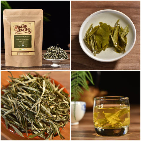 Yunnan Sourcing Brand Organic Green Tea Sampler