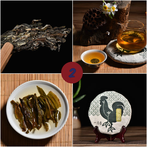 "2017 Yunnan Sourcing ""Autumn Yi Wu"" Raw Pu-erh Tea Sampler * Part 2"