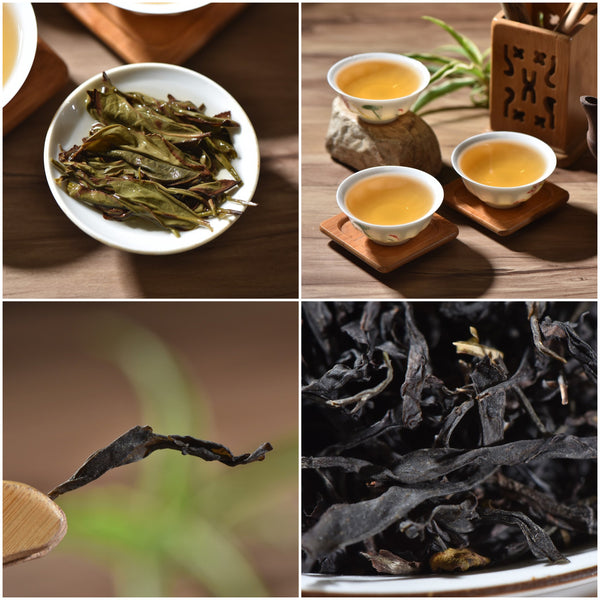 Dan Cong Oolong Tea Sampler - Middle Mountain