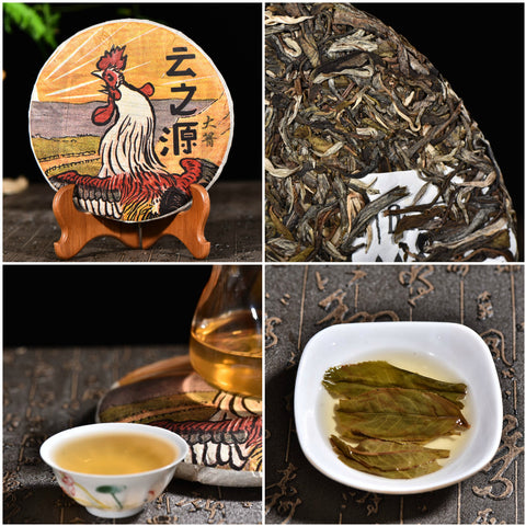"Yunnan Sourcing ""Da Qing Village"" Raw Pu-erh Tea Sampler"