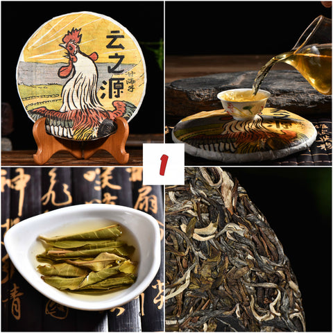 "2017 Yunnan Sourcing ""Autumn Jinggu"" Raw Pu-erh Tea Sampler * Part 1"