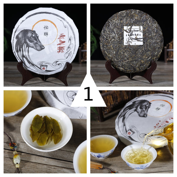 "2018 Yunnan Sourcing ""Spring Lincang"" Raw Pu-erh Tea Sampler - Part 1"