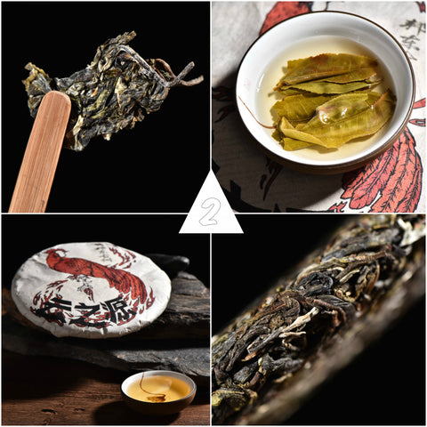 "2017 Yunnan Sourcing ""Autumn Lincang"" Raw Pu-erh Tea Sampler * Part 2"