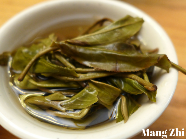 "2015 Yunnan Sourcing ""Autumn Mang Zhi"" Ancient Arbor Raw Pu-erh Tea Cake"