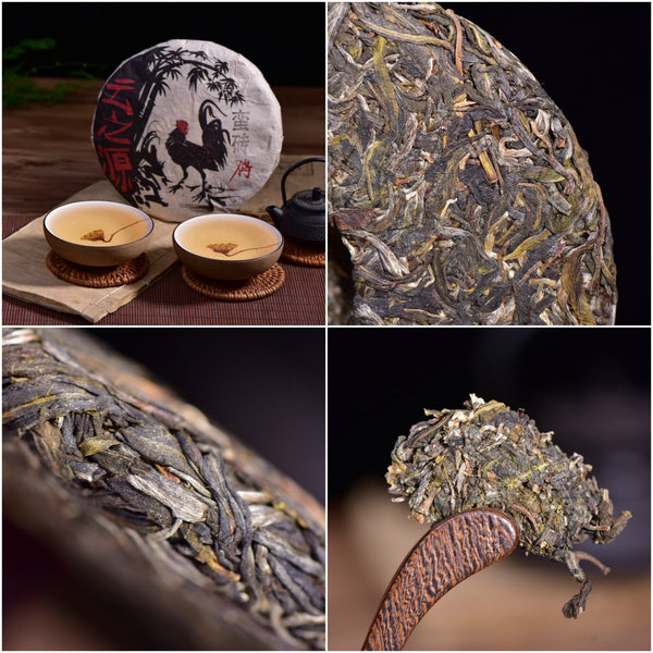 Yi Wu Focus - Man Zhuan Village Raw Pu-erh Tea Sampler