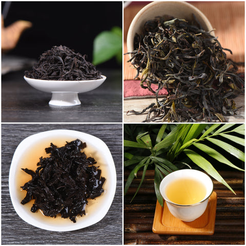 Introduction to Chinese Oolong Tea Sampler
