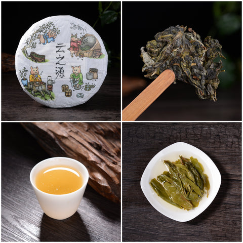 "2019 Yunnan Sourcing ""Bang Dong Pigs"" Raw Pu-erh Tea Sampler"