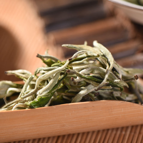"First Flush ""Mao Feng"" Yunnan Green Tea"