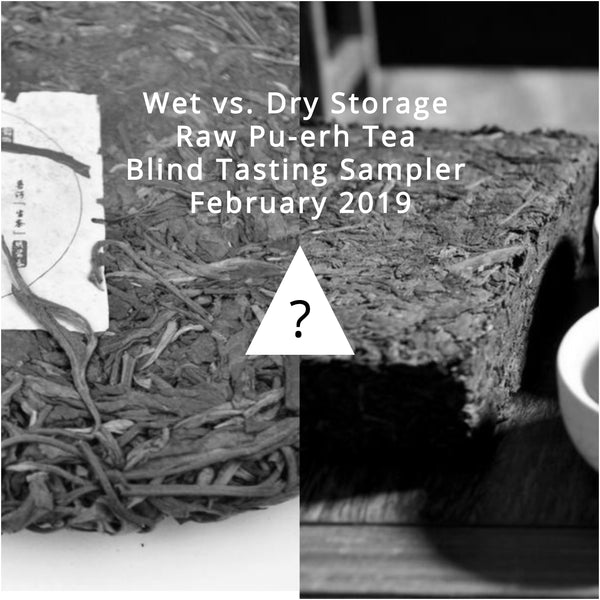 Wet vs. Dry Storage Raw Pu-erh Tea Blind Tasting Sampler * February 2019