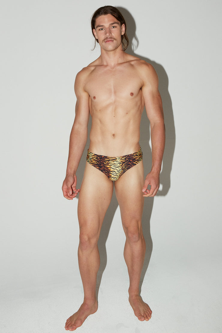 HVNC Tiger Swim Brief