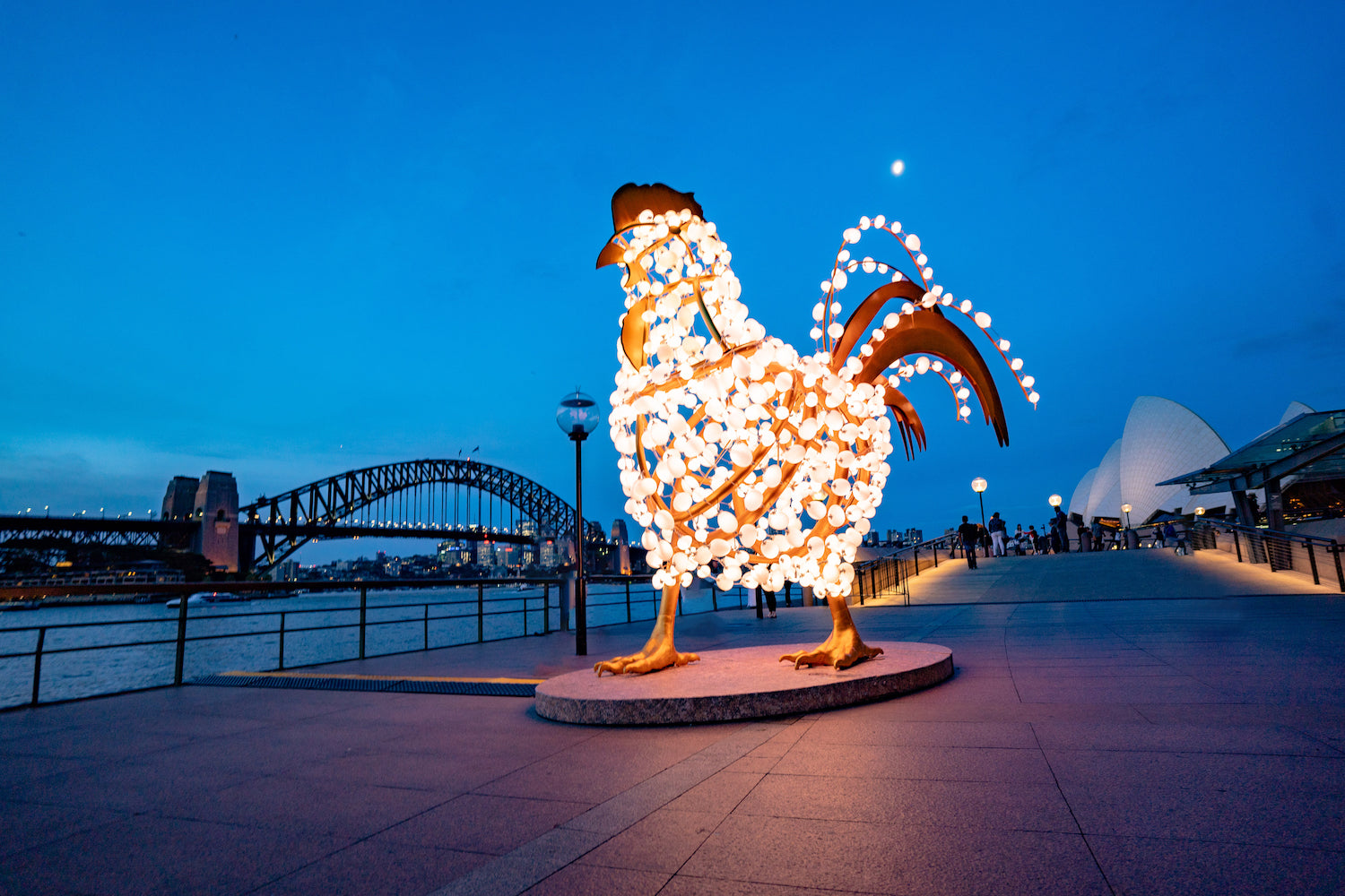 The Rooster art installation by Valerie Khoo