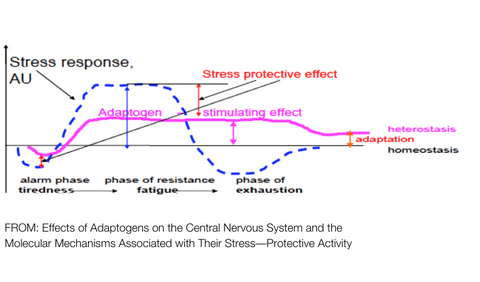 DIAGRAM SHOWING STRESS EFFECT OF ADAPTOGENS
