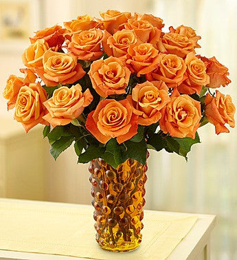 Sunset Glow Orange Roses, 12-24 Stems