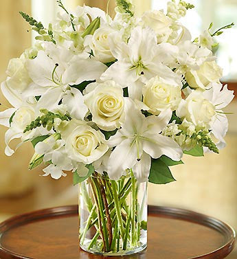 Pure White Arrangement