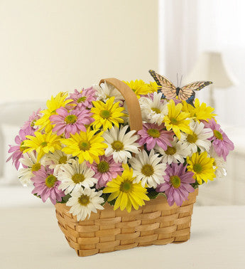 Daisy Delivery Basket
