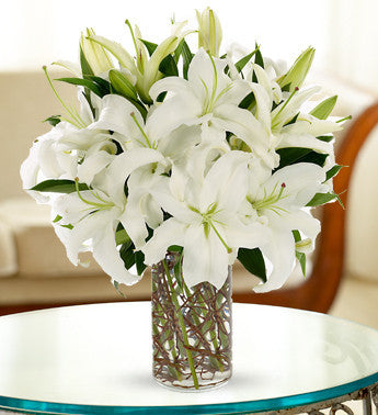 White Lily Spectacular