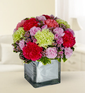 Charming Carnations in a Cube