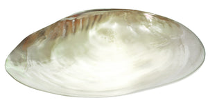 https://www.janeleslieco.com/products/sea-shell-with-feet