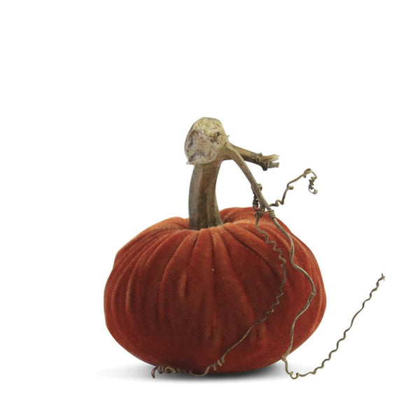 https://www.janeleslieco.com/products/plush-pumpkin-velvet-apricot-pumpkin