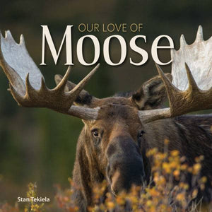 https://www.janeleslieco.com/products/our-love-of-moose